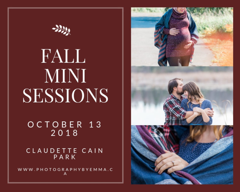 fall mini sessions , ottawa photography, fall photo ottawa